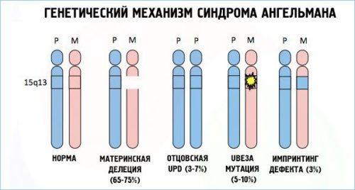 Генетический механизм синдрома Ангельмана